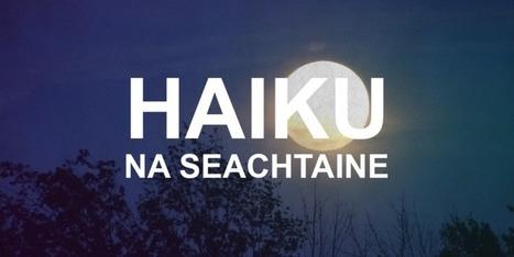 Haiku na Seachtaine | The Irish Literary Times | Scoop.it
