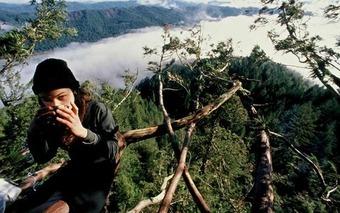 Sarah Pike — The roots of radical environmentalism | real utopias | Scoop.it