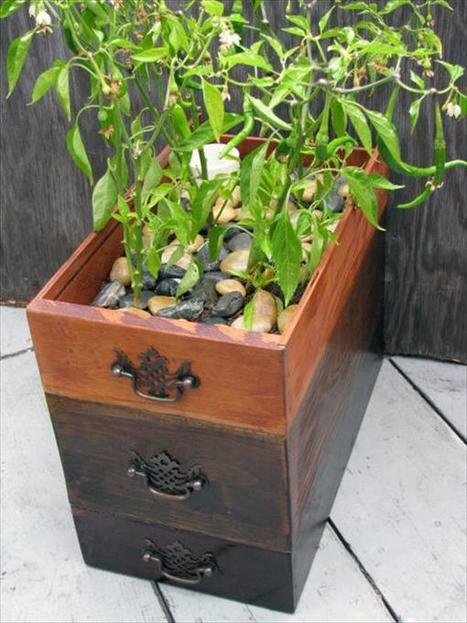 5 Upcycled Old Dresser into Planters | Upcycled Objects | Scoop.it