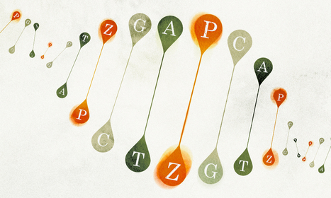 Chemists Invent New Letters for Nature's Genetic Alphabet | The promised land of technology | Scoop.it