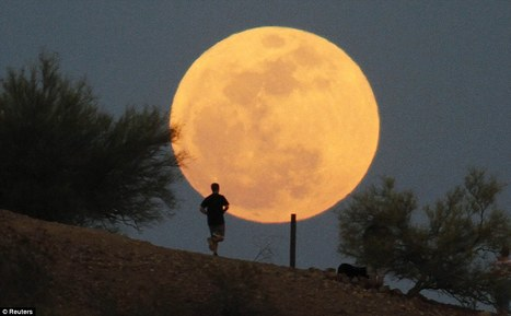 'Supermoon' wows, disappoints with its show (Video) | TonyPotts | Scoop.it
