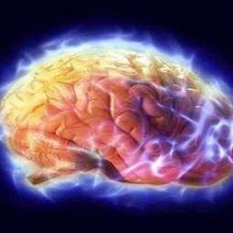 La memoria del futuro, così costruiremo i nostri ricordi - Repubblica.it | PsicoLogicaMente | Scoop.it