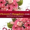 Floral banish for Bangalore to have all year through