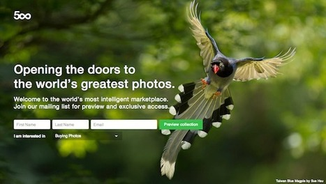 500px Prime: A New Licensing Marketplace that Promises Photographers a 30% Cut | MediaMentor | Scoop.it