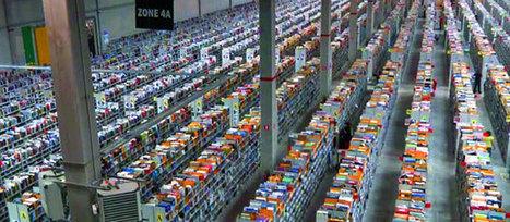 E-Commerce – Les livres vendus sur internet devront être plus chers ... - Webzeen | Commerce connecté, E-Commerce & vente en ligne, stratégie de commerce multi-canal et omni-canal | Scoop.it