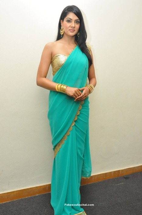 e7de7227b24e0 Sakshi Chaudhary in a Mango motifs Border Saree with One Shoulder Backless  Blouse Design