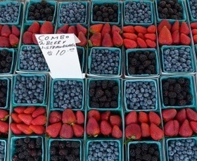 What You Need to Know About Genetically Engineered Food | Mrs. Nesbitt's Human Geography World | Scoop.it