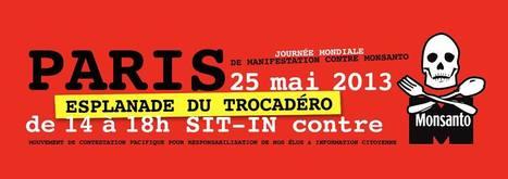 Manifestation contre Monsanto le 25 Mai partout dans le Monde! | Abeilles, intoxications et informations | Scoop.it