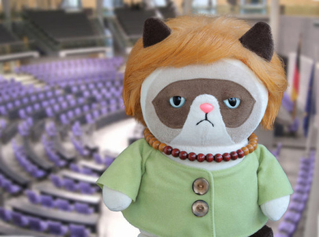 Angela Merkel devient une peluche Grumpy Cat | Les chats c'est pas que des connards | Scoop.it