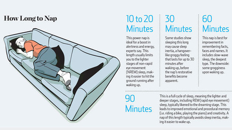 How Long To Nap For The Biggest Brain Benefits | Energy Health | Scoop.it