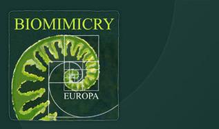 Biomimicry Europa   Moove it !  On se bouge !   Scoop.it