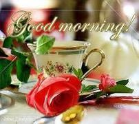 Good Morning Rose Pic With Name Sms Images A