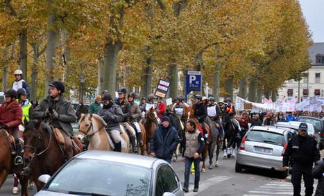 200 cavaliers manifestent contre la hausse de la TVA à Périgueux | Agriculture Aquitaine | Scoop.it