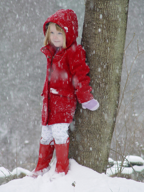 25 Stunning Snow Fall Images | Fotografia aos molhos -Photo everything | Scoop.it