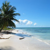 Caribbean Travel News & Tips