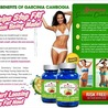 Strawberry Garcinia Cambogia Weight Loss