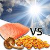 Treatment solutions for D Vitamin Deficit
