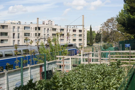 « Les jardins partagés et les initiatives locales rendent possible un renouveau démocratique » | Économie circulaire locale et résiliente pour nourrir la ville | Scoop.it