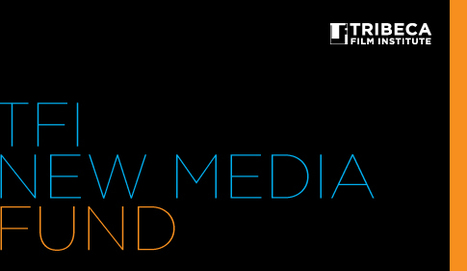 About the TFI New Media Fund | Art Work: Sustaining an artistic practice | Scoop.it