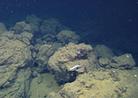 Weird Underwater Volcano Discovered Near Baja | Scuba Diving Adventures | Scoop.it