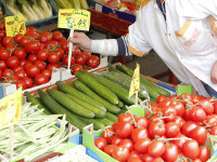 Russia needs to defend itself against WTO's GMO | Food issues | Scoop.it