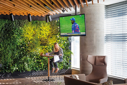 Green Building Wall Moves to Filter Indoor Air | Jardines Verticales y azoteas verdes. | Scoop.it