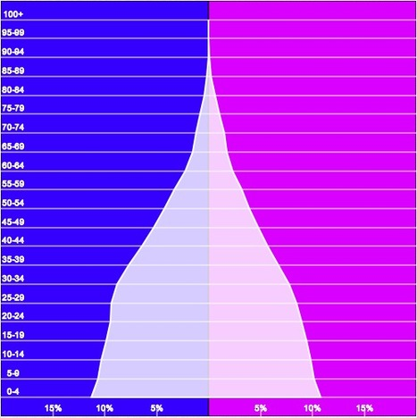 PopulationPyramid.net | AP Human Geography, WHS 2012-2013 | Scoop.it