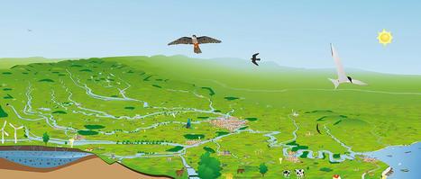 « SEINE GRANDEUR NATURE » : LA FRESQUE INTERACTIVE DU BASSIN-VERSANT ! | Histoires Naturelles | Scoop.it