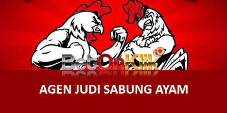 Image result for Sabung Ayam Casino