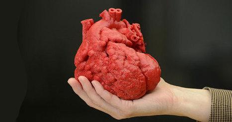 Un pas de géant pour les organes artificiels de demain : les vaisseaux sanguins synthétisés par impression #3D | Vous avez dit Innovation ? | Scoop.it