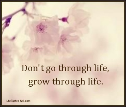 Donu0027t Go Through Life, Grow Through Life. Quotes