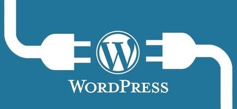 WordPress: Plugin e Temi | wordpressmania | Scoop.it
