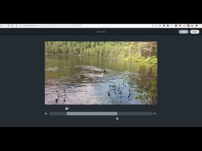 How to Insert Video Clips Into Adobe Spark Projects | Edtech PK-12 | Scoop.it