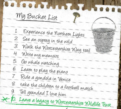 Bucket List | Business English Video | Scoop.it