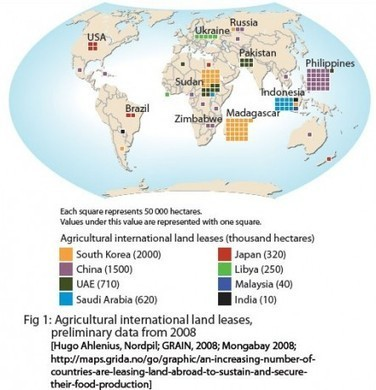 A global land-grab: is food the strongest currency? - Arup Foresight | The Glory of the Garden | Scoop.it