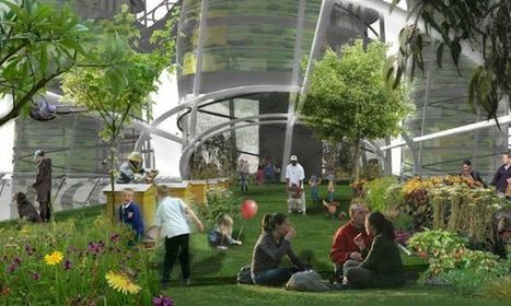The Vertical Field will make you live in an aeroponic farm | Future_Cities | Scoop.it