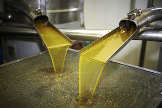 A la Tunisie la plus forte progression au monde (+74%) du stock d'huile d'olive