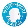 IDEFI: Initiatives d'excellence en formations innovantes