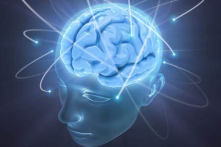 Brains determine how people react to mistakes - The Times of India | Cognitive Science | Scoop.it