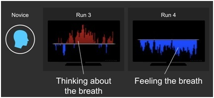 Real-time fMRI links subjective experience with brain activity during focused attention | NeuroImage | Contemplative Science | Scoop.it