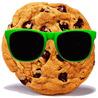 Informacja o Cookies na strone www