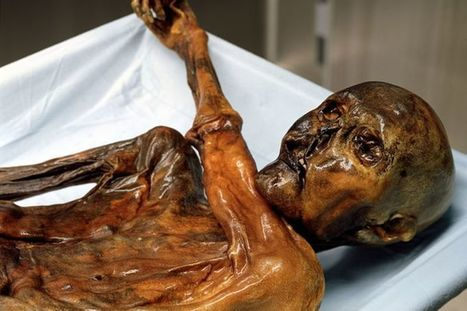 Ötzi the Iceman Was Making Prosciutto Over 5,000 Years Ago | Notebook | Scoop.it