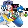 Website Design and Development Firm Virginia, Loudoun
