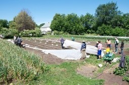 Urban Farming grows up » Ecotrust Blog | Vertical Farm - Food Factory | Scoop.it