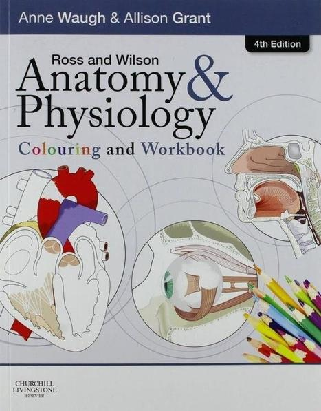 Tare gin gin yaad ch teri main ta jaga rata nu ross and wilson anatomy and physiology 11th edition ebook free 125 fandeluxe Image collections