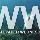 Take Your Desktop for a Swim with These Water-Friendly Wallpapers | Be Productive | Scoop.it