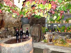 Cantine Aperte: gli appuntamenti a Montepulciano | Con i piedi per ... | Wine in Tuscany | Scoop.it