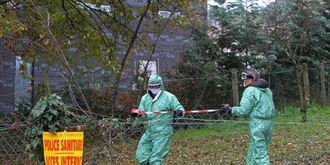 Grippe aviaire en Dordogne : l'attente des indemnisations   Agriculture en Dordogne   Scoop.it