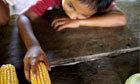 Global food crisis – interactive | Mrs.DunkenGeography | Scoop.it