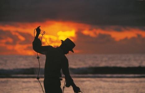 La Réunion lé là ! | Lancement officiel de www.my-islands-reunion.com | Collaboration Paxs Conseil & Dn'D | Infos pros btob & boites à outils de Paxs Conseil | Scoop.it